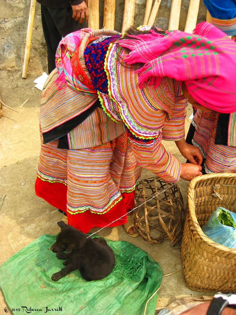 Bachasundaymarket_puppy_vietnam_beccajarrett_travelblogger