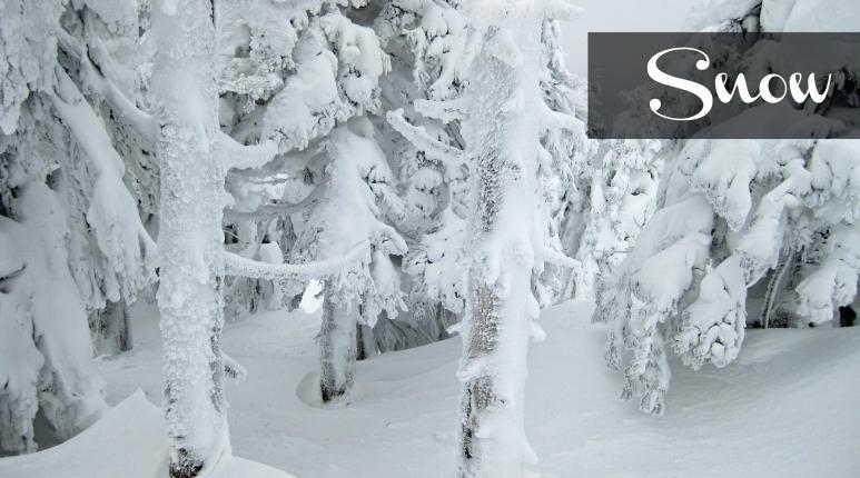 SnowboardingJapan_SNOW_thepersephoneperspective_travelblog