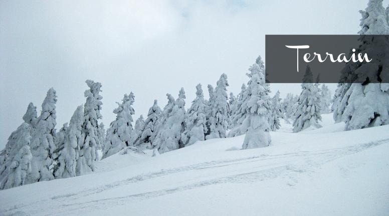 snowskijapan_terrain_thepersephoneperspective_adventureblog